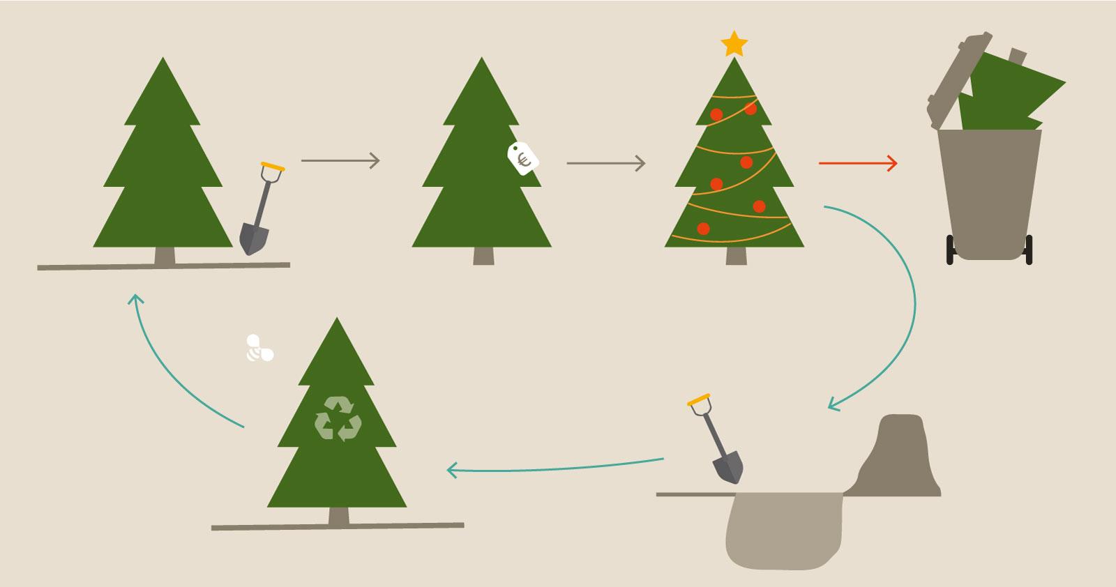 kerstboom recycle